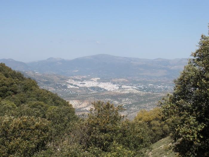 Sierra Albayate