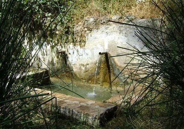 Fuente del Piojo 2