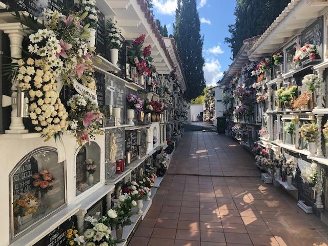 Bando Cementerio con motivo del la festividad de Todos Los Santos 1